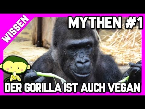 MYTHEN #1 - Affen 🐒 (Gorillas 🦍) ernähren sich auch VEGAN 🌿 und sind stark