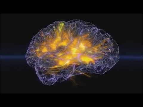 Brainwaves in real time