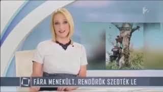 Magyar Mémek 1. Rész