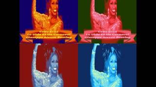 Celia Cruz - La Vida Es Un Carnaval (Giuseppe Aiezza Bootleg)