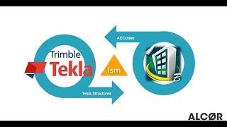Интеграция Tekla Structures с Aecosim через ISM