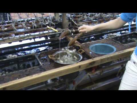 How silk is made in China