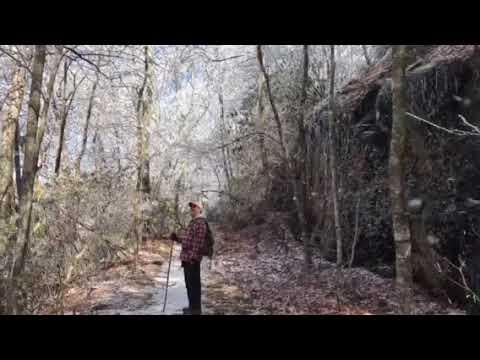 Wagon Trail Hike February 5, 2018 video