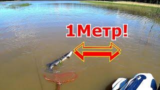Летняя Супер рыбалка на Спиннинг Открытие сезона на щуку Первый трофей
