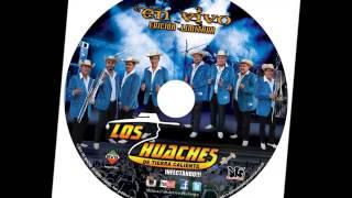 coyuca de catalan los huaches cd vip