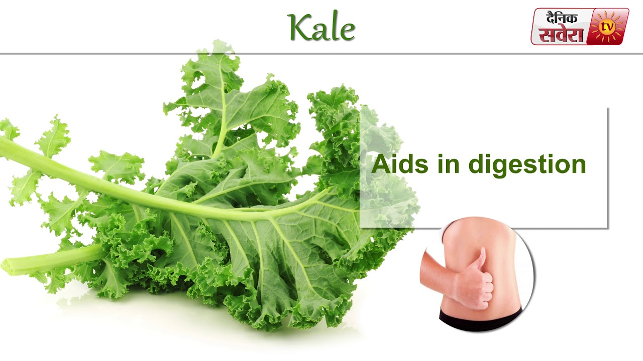 Tips Of The Day Food Facts Kale Youtube