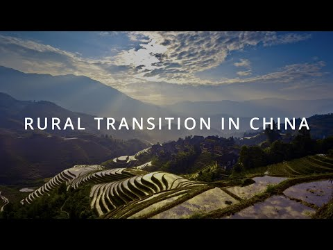 Rural Transition in China | SMU Research