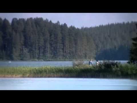 EDEN 2008 - Wild Taiga (Finland)