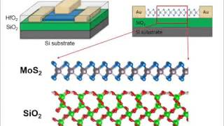 the effects of surface polarity and dangling bonds on the electronic properties of monolayer and bil