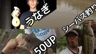 ウナギ・バス・シーバス・釣りよかボツ特集! thumbnail