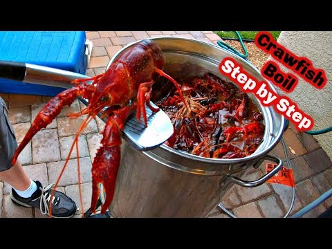 CRAWFISH BOIL Step By Step (clean And Cook)