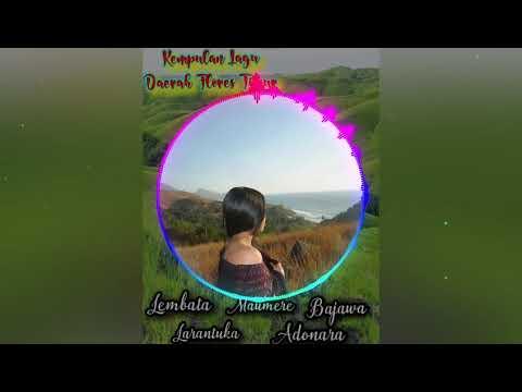 KUMPULAN LAGU-LAGU DAERAH FLORES TIMUR (LEMBATA, LARANTUKA ,MAUMERE, BAJAWA, ADONARA)