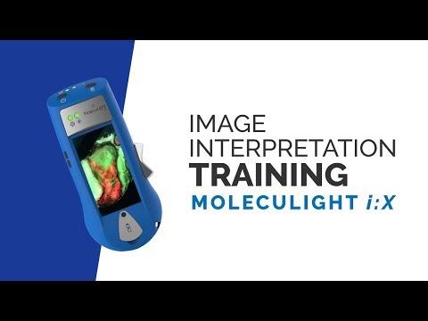 MolecuLight i:X Image Interpretation Training