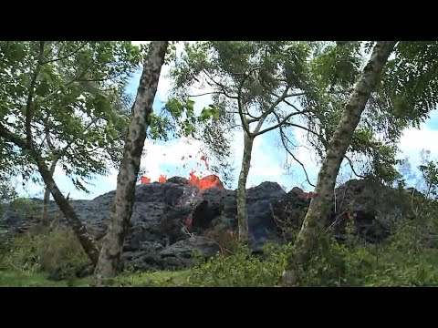 16th fissure opens east of Puna Geothermal Venture, no homes affected