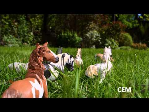 Коллекционные лошади SCHLEICH -Wild horses- СЕМ