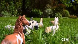 Коллекционные лошади SCHLEICH -Wild horses- СЕМ(В этом видеоролике представлены красивые фотографии коллекционных лошадей фирмы Schleic (и papo) под красивую..., 2015-06-05T15:10:10.000Z)
