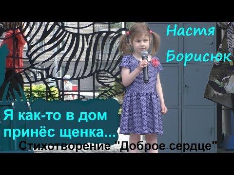 """Маленькая девочка рассказывает стих """"Доброе сердце"""" на дне города (30 июня 2019, Новосибирск)."""
