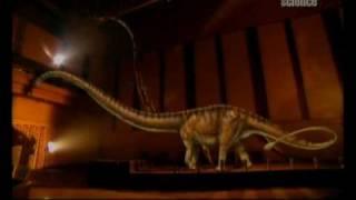 Amikor a dinoszauruszok uraltál Kínát 1.rész