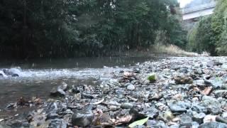 サベージXS FLUXを浅瀬の川で爆走させました。 このマシーンは最速悪路...