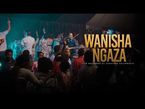 dr-ipyana---wanishangaza/utukuzwe---praise-and-worship-song