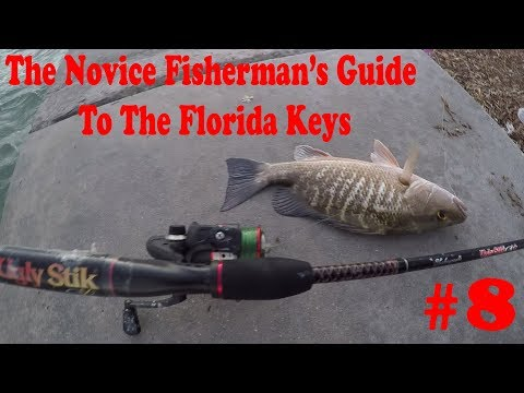 The Novice Fisherman's Guide To Fishing The Florida Keys #8 - Gone Fishing.