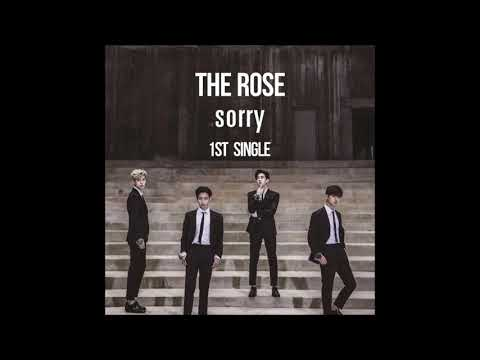 [1 HOUR LOOP] The Rose 더 로즈 - Sorry