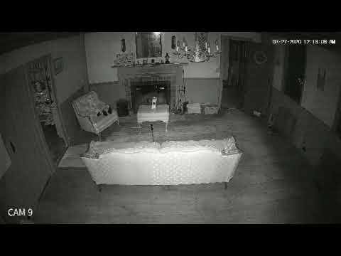 The House Exclusive Bonus Clip - Real Evidence 1 Haunted House - Conjuring Movie