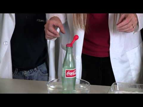Testing Charles's Gas Law