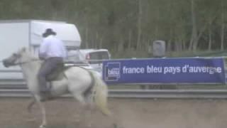 tri de bétail 2009
