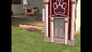 Sims 2 pets try for puppy