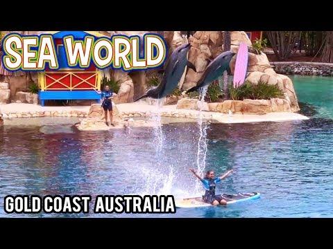 Sea World Gold Coast Australia Is AWESOME!