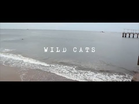 "DJ Skizz ""Wild Cats"" ft. Milano Constantine & Nem$ (Official Video)"