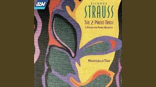 R. Strauss: Piano Trio No. 2 in D major, AV 53 - 4. Finale: Lento assai - Allegro vivace