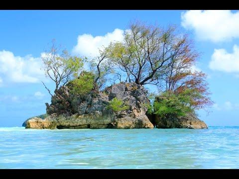 水底天堂Palau帛琉Paradise Under Water(水母湖.大斷層.牛奶湖.鯊魚城.藍角.藍洞.鯨魚島)