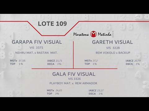 LOTE 109 Maratona Matinha
