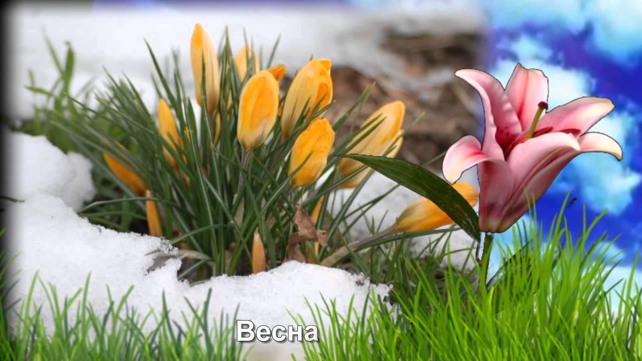 Учим времена года Зима,весна, лето , осень для малышей ...
