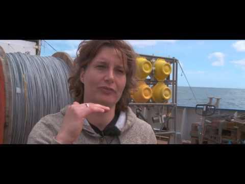 Royal NIOZ & STW - Ecology research on Deep Sea Mining - Azores