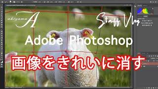 Photoshop 基礎講座 フォトショップを使おう【画像をきれいに消す】細かい画像のネットを消す!