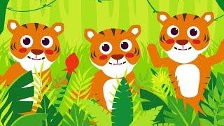 10 Küçük Kaplancık | + En Sevilen AfacanTV Çocuk Şarkıları