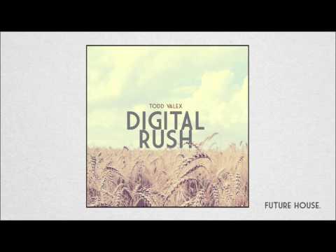 Todd Valex - Digital Rush (Original Mix)