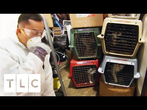The WORST Hoarding Cases | Hoarding: Buried Alive
