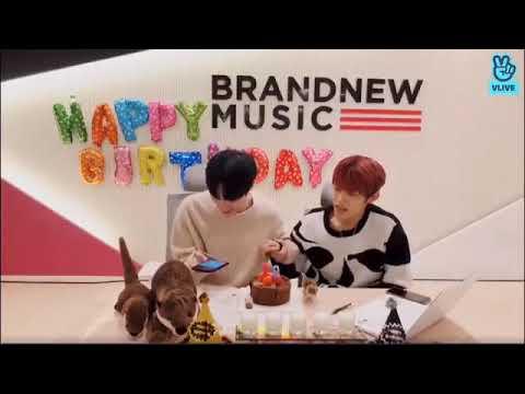 Daehwi Woojin Live Sing Candle