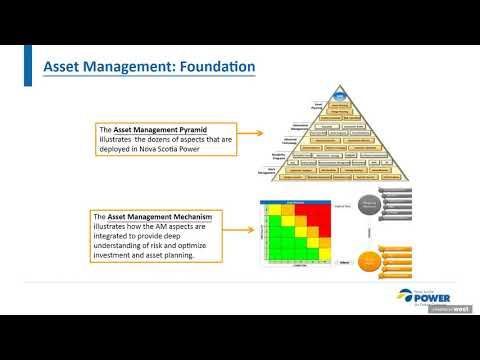 From Data Deluge to Optimal Asset Management