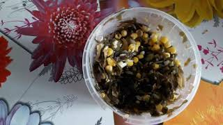 Оригинальныей салат из морской капусты