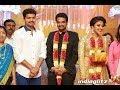 Ilayathalapathy Vijay at Director Vijay Actress Amala Paul Wedding Reception Marriage Video