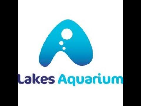 Lakeland Aquarium -  Newby Bridge - Cumbria