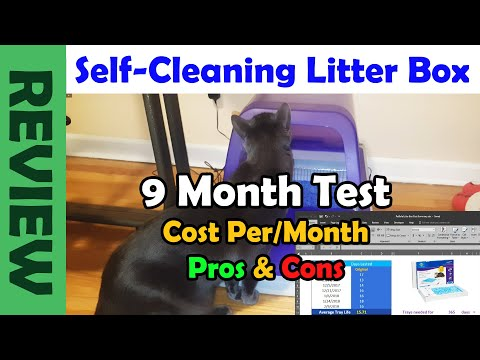 Does A Self-Cleaning Cat Litter Box REALLY WORK? | PetSafe ScoopFree