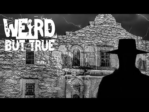 """REMEMBER THE ALAMO… is haunted!""  #WeirdButTrue"