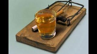 """""""Смертельный выбор! Отравляй и властвуй!"""" - видео о вреде алкоголя и курения"""