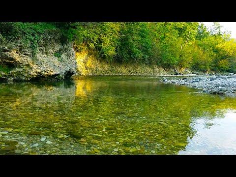Звуки Природы -